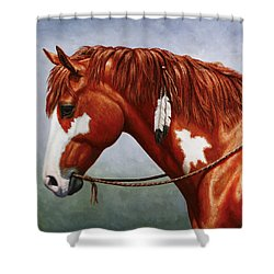 Native American Pinto Horse Shower Curtain by Crista Forest