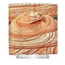 Natural Abstract Canyon De Chelly Shower Curtain by Bob and Nadine Johnston