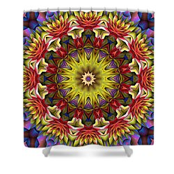 Shower Curtain featuring the digital art Natural Attributes 02 Horizontal by Wendy J St Christopher