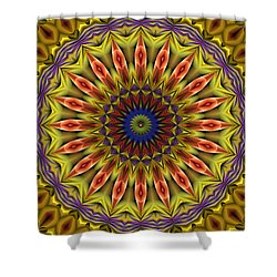 Shower Curtain featuring the digital art Natural Attributes 03 Horizontal by Wendy J St Christopher