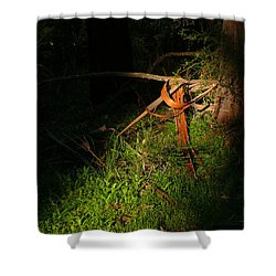 Shower Curtain featuring the photograph Natural Bands 2 by Evelyn Tambour