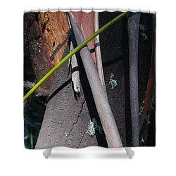 Shower Curtain featuring the photograph Natural Bands 3 by Evelyn Tambour