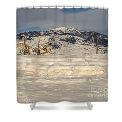 Natural Beauty Shower Curtain by Sue Smith
