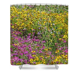 Natural Beauty Shower Curtain by Tim Townsend