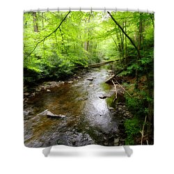 Shower Curtain featuring the photograph Natural Beauty by Trina  Ansel