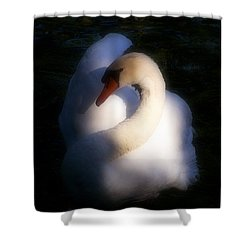 Natural Elegance Shower Curtain