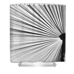 Natural Expolsion Shower Curtain by Sabrina L Ryan