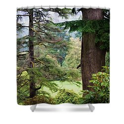Natural Magnetism. Scotland Shower Curtain by Jenny Rainbow