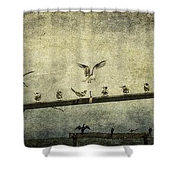 Natural Order Shower Curtain by Andrew Paranavitana