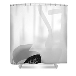 Natural Path 2013 1 Of 1 Shower Curtain