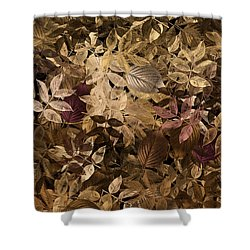 Naturaleaves - Gla02f Shower Curtain by Variance Collections