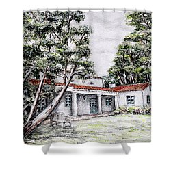 Nature And Architecture Shower Curtain by Danuta Bennett
