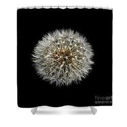 Shower Curtain featuring the photograph Nature Clock by Liz  Alderdice