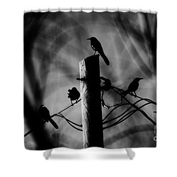 Shower Curtain featuring the photograph Nature In The Slums by Jessica Shelton