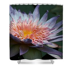 Nature's Baroque Shower Curtain by Yvonne Wright