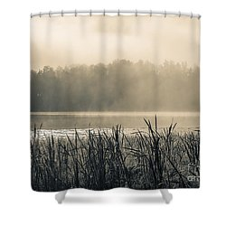 Nature's Beauties - Spiderwebs Birds And Mist Shower Curtain