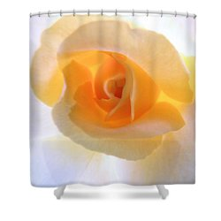 Natures Beauty Shower Curtain by Robyn King