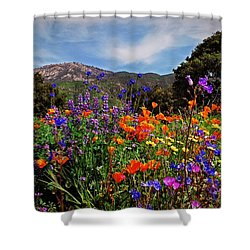 Nature's Bouquet  Shower Curtain by Lynn Bauer