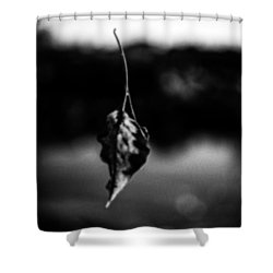 Natures Illusion Shower Curtain by Bob Orsillo