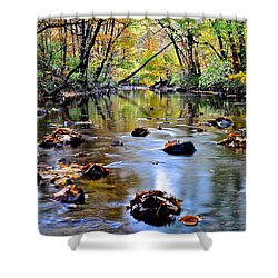 Natures Mood Lighting Shower Curtain by Frozen in Time Fine Art Photography