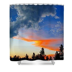 Nature's Palette Shower Curtain by Barbara Chichester