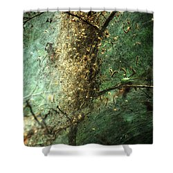 Natures Past Captured In A Web Shower Curtain