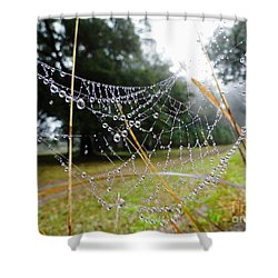 Natures Pearls Shower Curtain