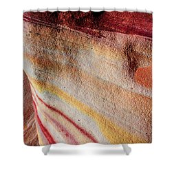 Nature's Valentine Shower Curtain by Chad Dutson