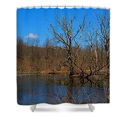 Nature's Wasteland Shower Curtain