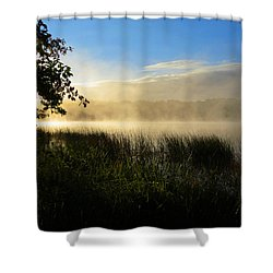 Shower Curtain featuring the photograph Nature's Way by Dianne Cowen