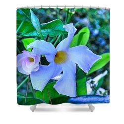 Flower 14 Shower Curtain