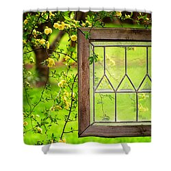 Nature's Window Shower Curtain by Greg Simmons