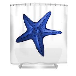 Nautical Blue Starfish Shower Curtain