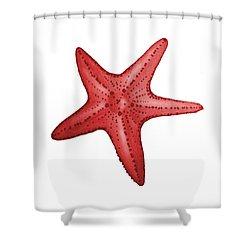 Nautical Red Starfish Shower Curtain