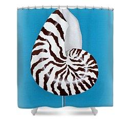 Nautilus Sea Shell Shower Curtain by Karyn Robinson
