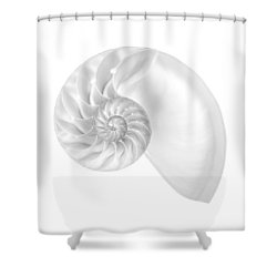 Nautilus Shell Interior Shower Curtain
