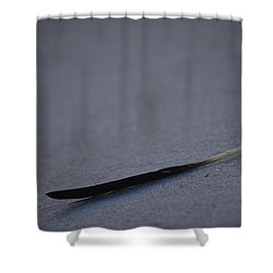 Shower Curtain featuring the photograph Navarre Beach Solo Bird Feather by Jeff at JSJ Photography