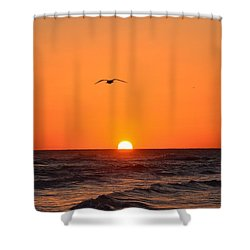Shower Curtain featuring the photograph Navarre Beach Sunrise Waves And Bird by Jeff at JSJ Photography