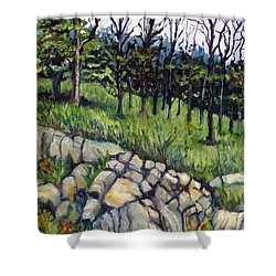 Near Three Rivers Shower Curtain