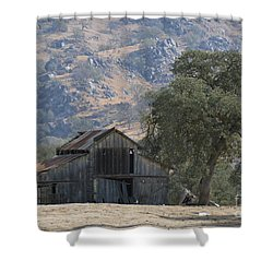 Shower Curtain featuring the photograph Nearly Gone by Debby Pueschel