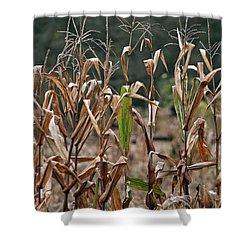 Neball Corn Field Shower Curtain