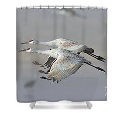 Neck N Neck Shower Curtain