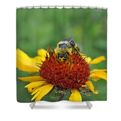 Need More Pollen Shower Curtain