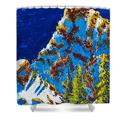 Needles 2 Shower Curtain