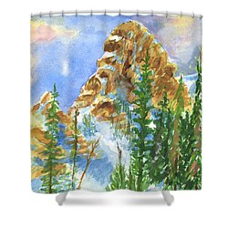 Needles Shower Curtain