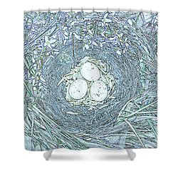Nest Eggs By Jrr Shower Curtain by First Star Art