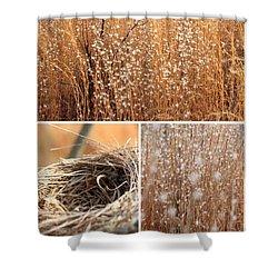 Nest Field Shower Curtain by AR Annahita