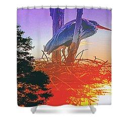 Nesting Heron - Summer Time Shower Curtain