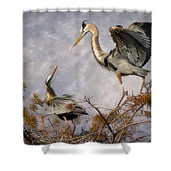 Nesting Time Shower Curtain