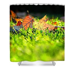 Shower Curtain featuring the photograph Nestled by Greg Simmons